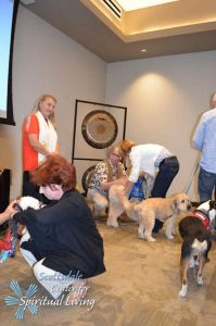 PetBlessing2016-11