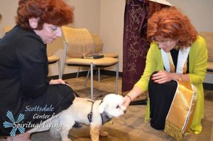 PetBlessing2016-17